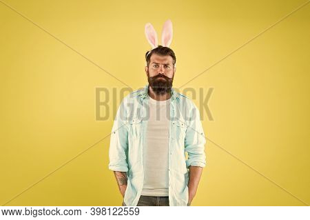 Difference Between Rabbits And Hares. Male Rabbit Personality Traits. Rabbit Men Are Gentle Modest K