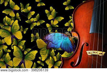 Melody Concept. Colorful Blue Morpho Butterfly Sitting On An Antique Violin. Violin On The Backgroun