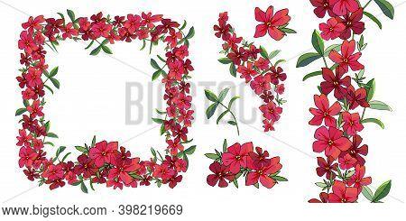 Vector Flower Romantic Set. Hand Drawn Illustration.