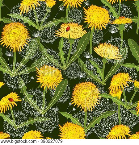 Seamless Pattern With Dandelion Isolated On Green.