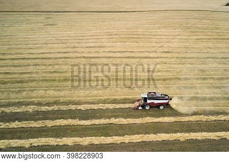 Harvesting Of Wheat. A Small Combine Harvester Picks Up The Mown Rolls And Threshes Them. Shooting F