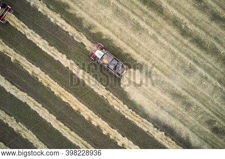 Harvesting Of Wheat. Two Small Combines Pick Up The Mown Rolls And Thresh Them. Shooting From The Ai
