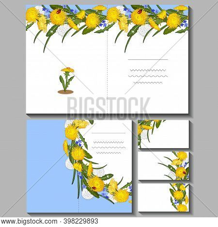 Spring Cute Set With Floral Templates Of Dandelions. Vector Hand Drawn Illustration. Excellent Print