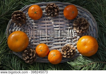 Orange Tangerines And Christmas Cones On A Natural Wicker Stand On Green Pine Branches. Natural Eco-