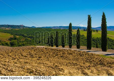 San Quirico d\'Orcia, Italy - September 3rd 2020. Poplars lining a country road in the late summer landscape in Val d\'Orcia near San Quirico d\'Orcia, Siena Province, Tuscany, Italy