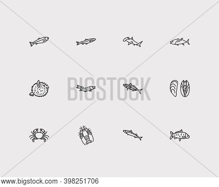 Fauna Icons Set. Carp Fish And Fauna Icons With Scad, Spiny Lobster And Salmon. Set Of Crayfish For