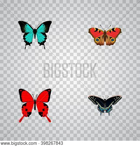Set Of Butterfly Realistic Symbols With Hairstreak, Precis Almana, And Other Icons For Your Web Mobi