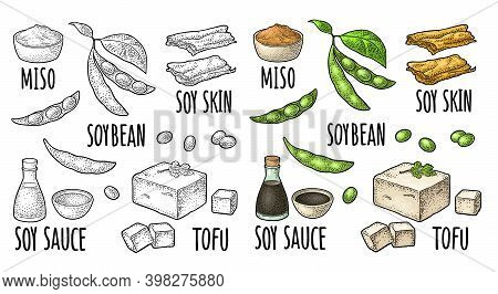 Soy Food Set. Miso, Tofu Skin, Soybean, Sauce