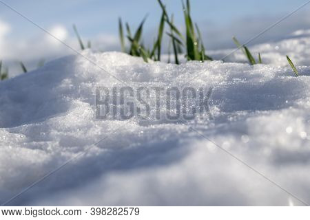 Close Up Of Snow Texture With Unfocused Grass.