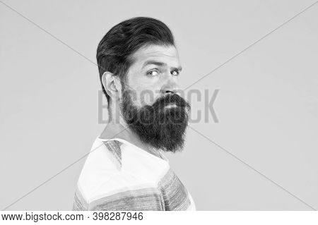 Stylish Beard And Mustache Care. Hipster Appearance. Beard Fashion And Barber Concept. Man Bearded H