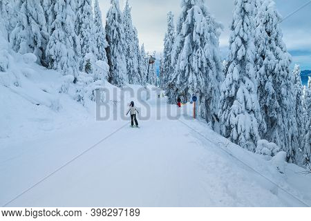 Picturesque Snow Covered Pine Trees And Majestic Winter Ski Resort. Active Skiers Skiing Downhill In