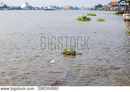 View Of The City And The Chao Phraya River In Pathum Thani Province In Thailand