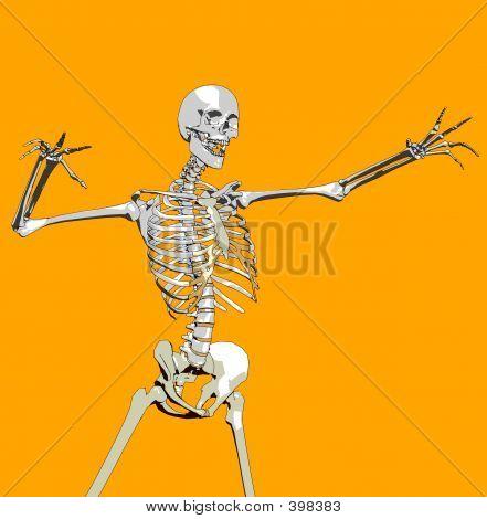 Bone 109