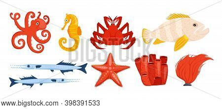 Underwater Life Collection. Undersea Icon Set. Starfish, Seaweed, Seahorse, King Crab, Tropical Fish