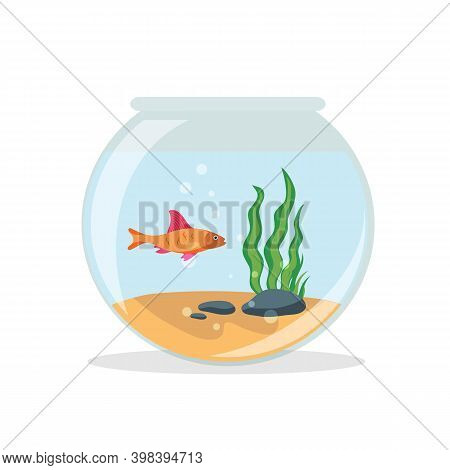 Goldfish In Fishbowl Isolated On White Background.   Aquarium Golden Fish In Flat Style.  Vector Sto
