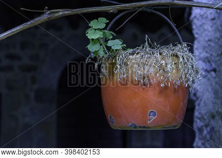 Old Vintage Containers Hanging. Objects Used As Flower Holders On The Outside Of Houses.