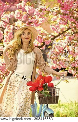 New Green Life. Pink Blossoming Sakura. Relax In Park. Fashion And Beauty. Woman Ride Vintage Bicycl