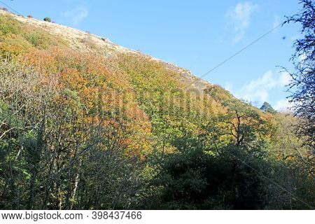 Hills Of The Teign Valley In Autumn