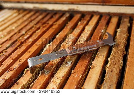 Beekeeper Tool Lays On Opened Wooden Beehive. Collect Honey. Beekeeping Concept