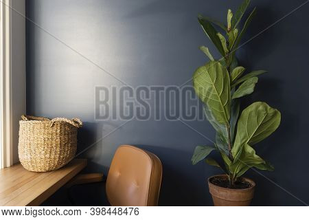 Room Interior With Work Desk And Blue Wall. Green Plant Or Flower In The Interior Of The Room Agains
