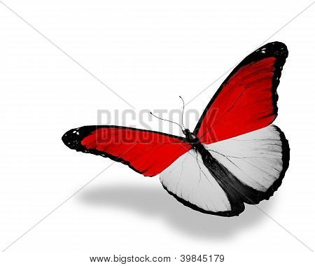 Monegasque Flag Butterfly Flying, Isolated On White Background
