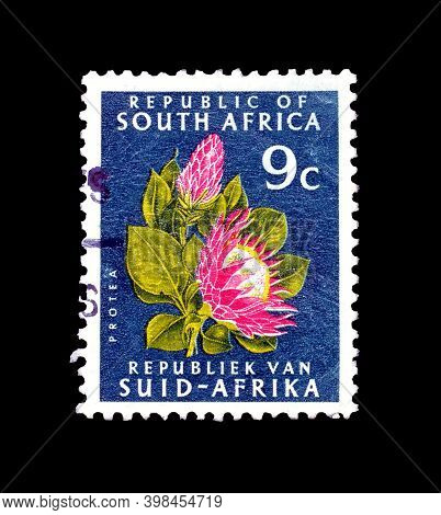 South Africa - Circa 1971 : Cancelled Postage Stamp Printed By South Africa, That Shows Protea (prot
