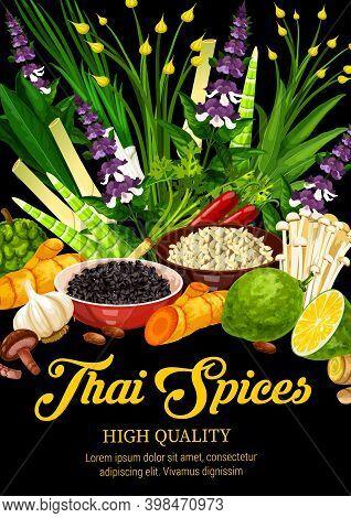 Thai , Herbs, Food Condiments And Seasonings. Asian Cuisine Kaffir, Lemongrass, Chili And Ginger, Li