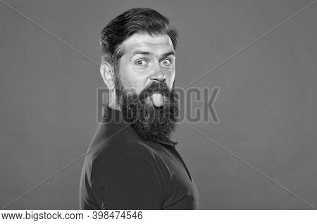 Bearded And Playful. Bearded Man Stick Tongue Out Red Background. Unshaven Hipster With Bearded Face