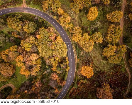 Birds-eye View Of A Tarmac Road Passing Through A Woodland In Bright Autumn Colours In The Balagne R