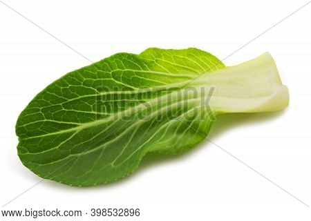 Pak Choi (brassica Rapa Chinensis) Isolated On White