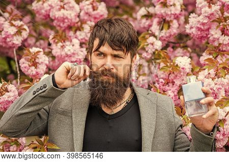Sakura Smell. Man Hold Perfume Bottle. Man Prefer Expensive Fragrance Smell. Fragrance Smell. Best M
