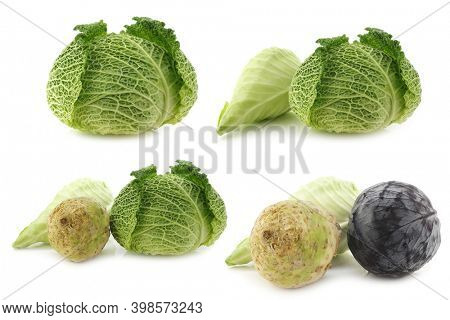 green cabbage, a pointed cabbage and a red cabbage on a white background