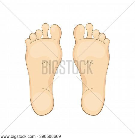 Vector Illustration Of A Womans Soles. Feet, Sole, Body Part.