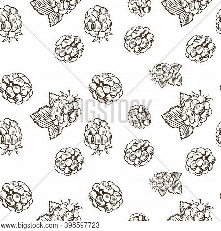 Black And White Seamless Pattern With Blackberries In Vintage Style