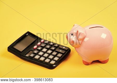 Taxes And Fees Concept. Tax Savings. Piggy Bank Money Savings. Investing Gain Profit. Piggy Bank Pig