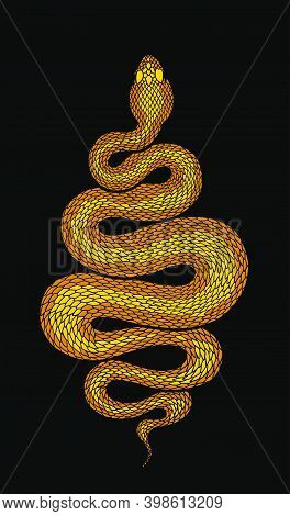 Golden Brown Coiled Snake Detailed Illustration. Tribal Serpent Isolated Over Black. Vector Reptile