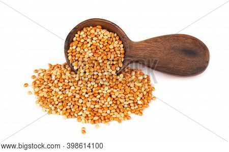 Millet In Wooden Spoon, Isolated On White Background. Unpeeled Millet Seeds.