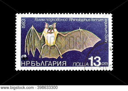 Bulgaria - Circa 1983 : Cancelled Postage Stamp Printed By Bulgaria, That Shows Greater Horse-shoe B