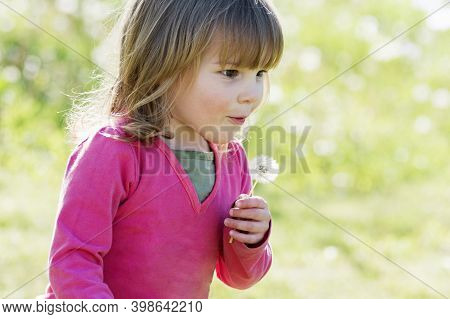 The Cute Little Girl In Pink Is Blowing Dandelion Outdoors In The Nature On Green Background.