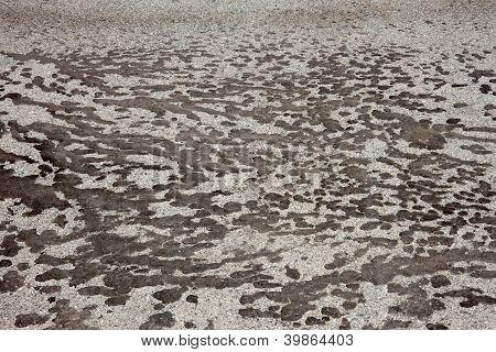 Tar Stains On Gray Asphalt