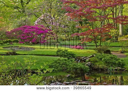Colorful Japanese garden