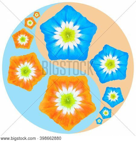 Floral Symbol Yin-yang. Bindweed. Geometric Pattern Of Yin-yang Symbol, From Plants On Colored Backg