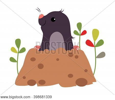 Funny Mole As Forest Animal Peeping Out From Earth Hole Vector Illustration