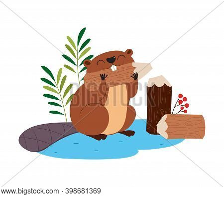 Funny Beaver Rodent As Forest Animal Gnawing Woodvector Illustration