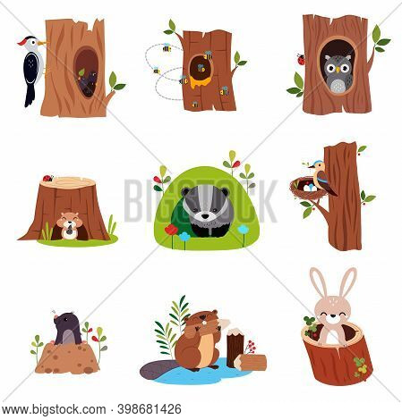 Cute Forest Animals Sitting In Burrows And Tree Hollows Vector Set