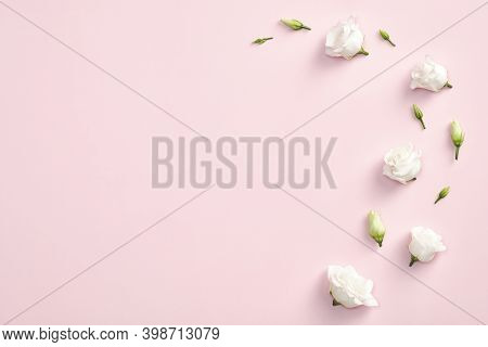 Minimal Flat Lay Composition With Roses Flowers And Petals On Pastel Pink Background. Flat Lay, Top