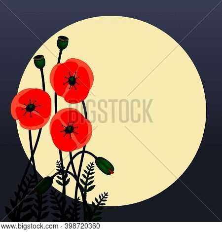 Poppy Flowers Image. Red Poppy Flowers Against The Moon. Floral Background Images. Vector Illustrati