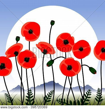 Poppy Flowers Image. Red Poppy Flowers Against The Sky. Floral Background Images. Vector Illustratio