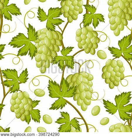 Pattern With Branches Of Grapes.bunches Of Grapes On A White Background In A Colored Pattern.