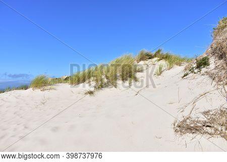 Sand Dune With White Sand, Grass And Blue Sky. Rias Baixas, Galicia, Spain.